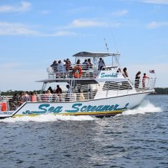 Sea Screamer 2